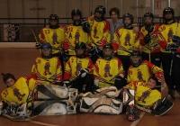 19/02/2011 - Fiamma Gorizia - Rhinos Treviso