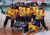 25/11/2007 - Quarto Torneo Dinos (Sacile - PN)