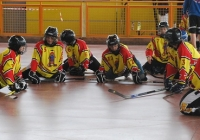 30/05/2010 - Quinto Mini Hockey Day a Buja (UD)